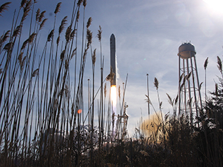 View of Antares rocket launching from Wallops Flight Facility with marsh reeds in the foreground.