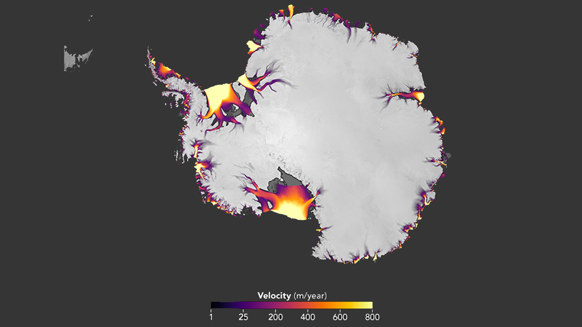 The speed of Antarctic ice flow, derived from Landsat imagery over a seven-year period.