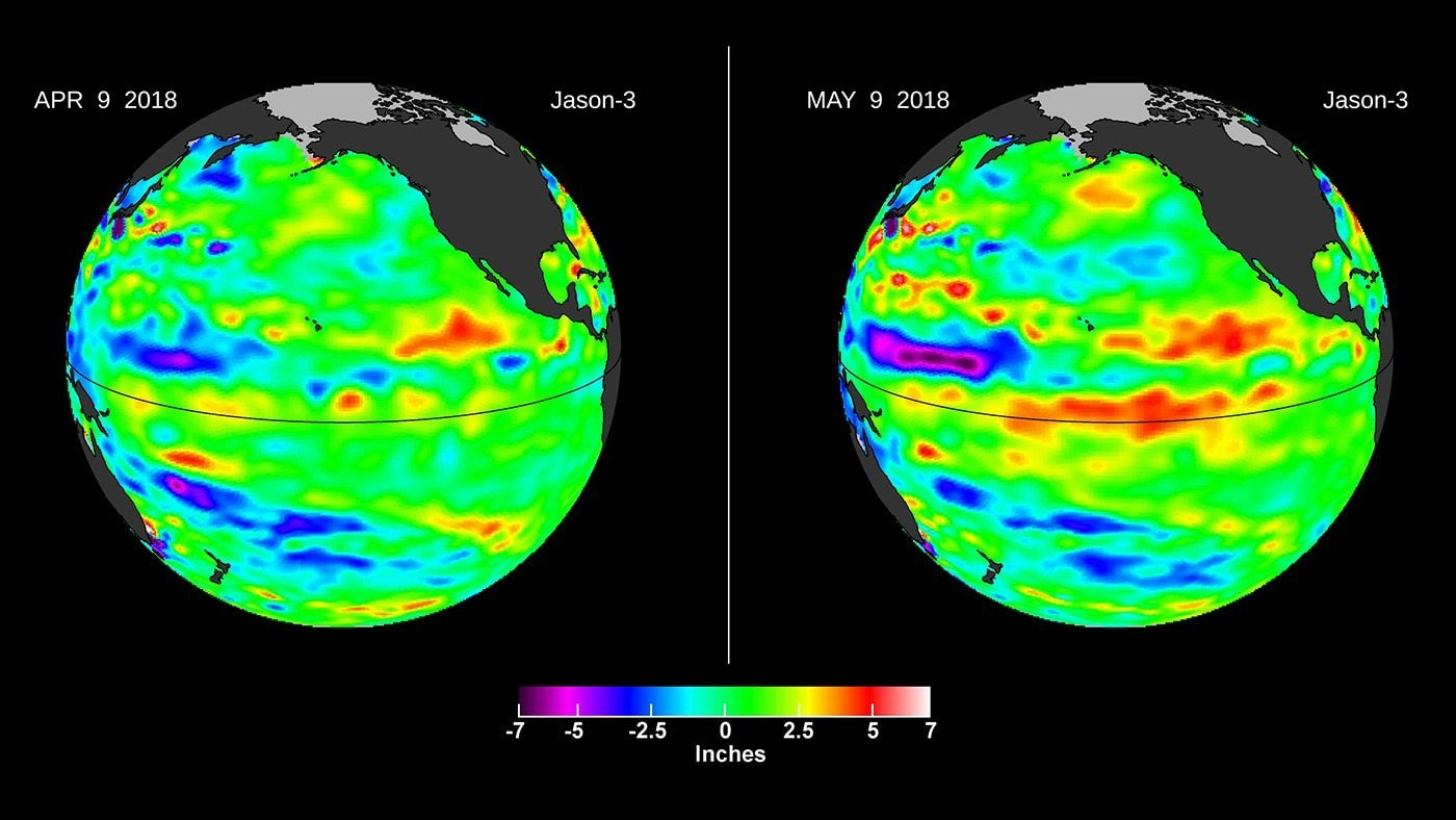 Left, in April, the Jason-3 satellite shows most of the Pacific Ocean at neutral heights (green). In May, a Kelvin wave (red) appears on the equator. Credit: NASA/JPL-Caltech › Full image and caption