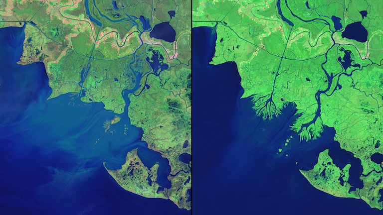 Satellite views of Louisiana's growing Wax Lake Delta from November 7, 1984, and October 25, 2014. Also see this image pair and visit the 'Images of Change' gallery for more views of your changing planet.